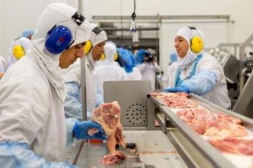 Carne Fraca reduz ritmo de abates e impactos chegam aos produtores