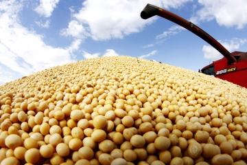 Preço da soja se encaminha para uma definição