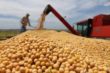 Colheita da soja atinge 22% da área no Rio Grande do Sul