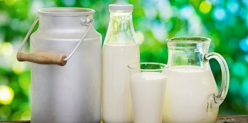 """Produtores de leite recebem """"retorno"""" pela entrega de produção"""