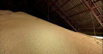 Produtor mantém soja estocada à espera de melhora no preço do grão