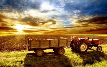 PIB Agropecuário terá crescimento de 10,9% este ano, prevê Ipea: