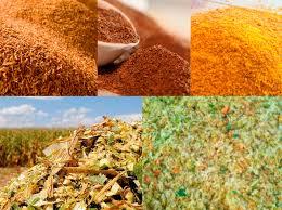 Nutrição animal é o novo foco de importação da Arábia Saudita