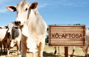 Brasil deve ampliar mercado para carne bovina com certificado de eliminação da aftosa, diz ministro