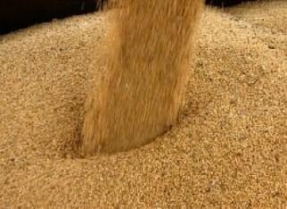 Demanda aquecida e câmbio mantêm a cotação do farelo de soja firme