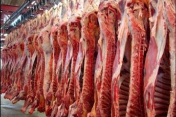 Exportações de carne suína já somam 28,4 mil toneladas em novembro