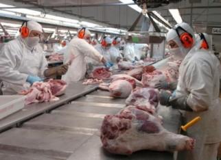 Aberta consulta de normas do monitoramento de carcaças bovinas e suínas