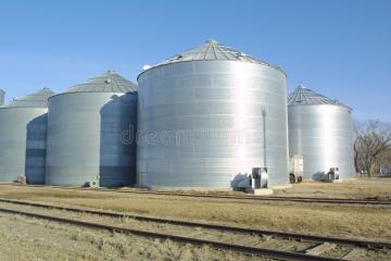 Conab leiloa 10 mil toneladas de milho no MT em 12 de julho