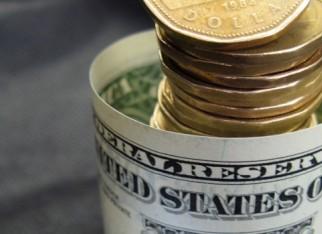 Dólar dá sustentação às cotações da soja e farelo de soja no BR