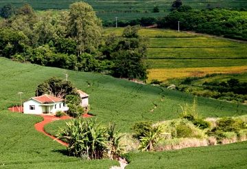 Mais de 5,3 milhões de imóveis rurais no Brasil foram mapeados em 5 anos