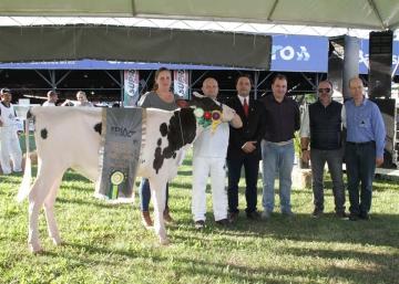 Expositores humaitenses conquistam 11 títulos no Grande Campeonato da Expoleite Fenasul