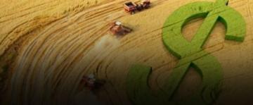 PIB agro registra alta de 0,04%
