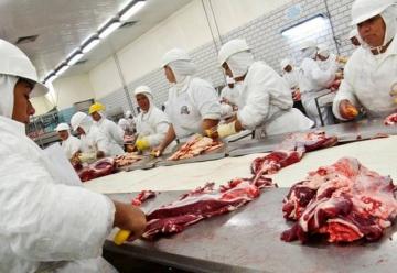 Boi gordo: Brasil eleva percentual de carne bovina destinada à exportação