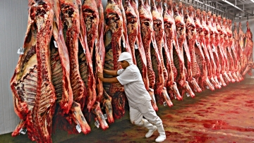 Brasil assina acordos sanitários para exportação de carne e farelo de algodão