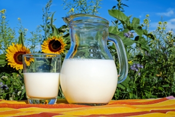 Deputados debatem impactos da abertura do mercado lácteo