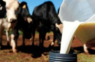 Coronavírus – foco da indústria é manter captação de leite, abastecimento e pagamentos em dia