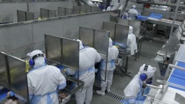 Trabalhadores de frigoríficos temem demissões após férias coletivas por falta de gado