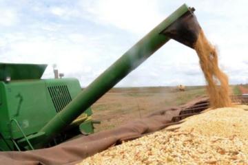 Saca de soja despenca no mercado brasileiro; preço vai de R$ 170 para R$ 158