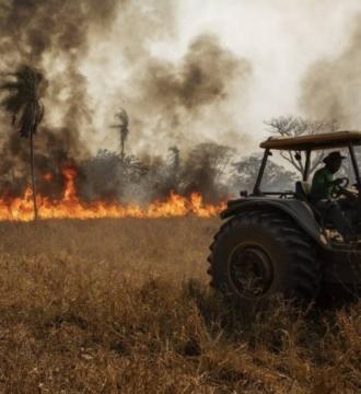 MT investirá R$ 439,3 milhões em plano emergencial para recuperar pecuária no Pantanal