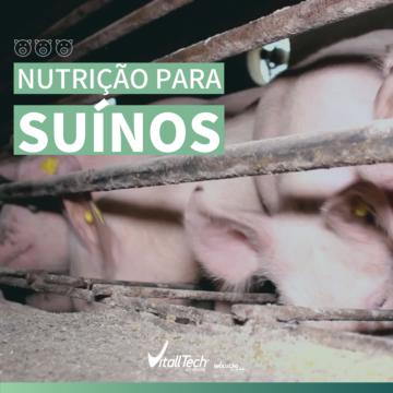 Nutrição para suínos