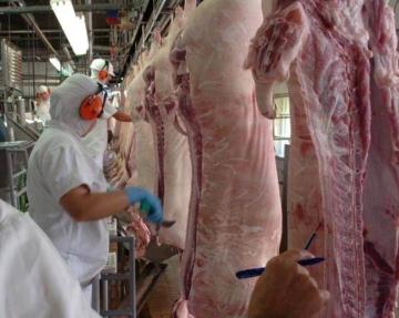 No 2º trimestre de 2021, abate de suínos é o maior desde 1997